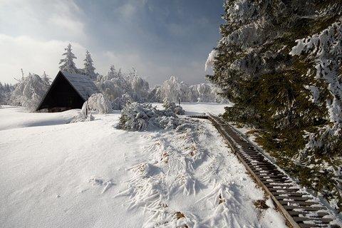 FOTKA - Georgenfelder Hochmoor..