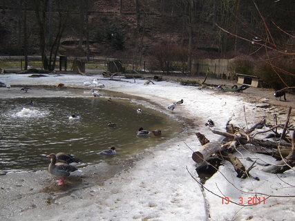 FOTKA - zoo Jihlava,,,,,,