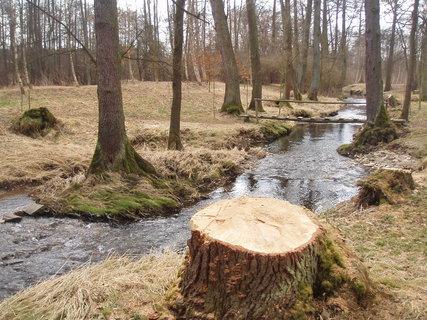 FOTKA - u potoka ,,