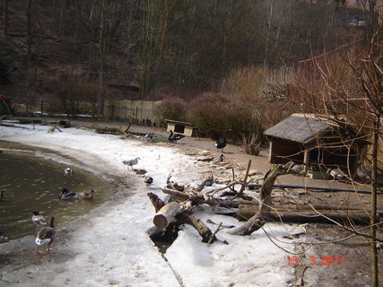 FOTKA - Zoo Jihlava,,
