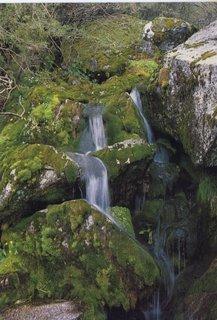 FOTKA - pohoří Serra da estrela III.