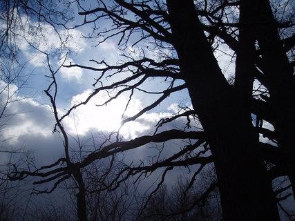 FOTKA - strašidelný podvečer