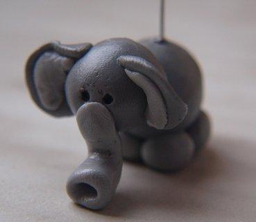 FOTKA - sloník2