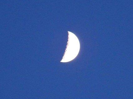FOTKA - měsíček 10.4.2011