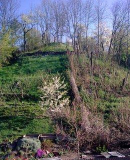 FOTKA - Je jaro