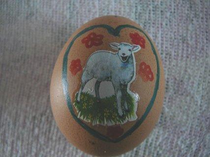 FOTKA - vejce 4
