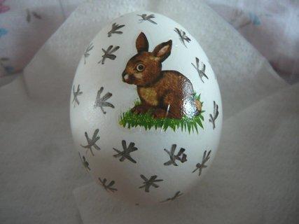 FOTKA - vejce 6