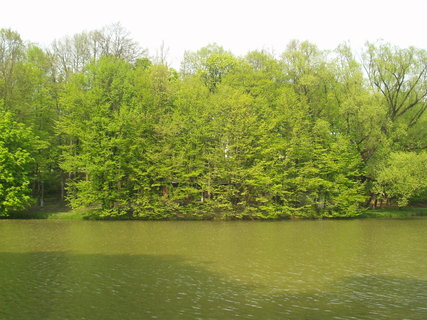 FOTKA - Jaro v parku 15