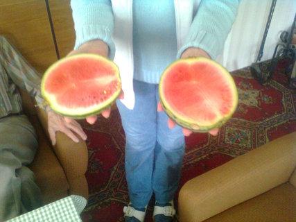 FOTKA - a ten jsme také vypěstovali v Jizerkách