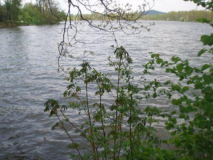 FOTKA - u rybníka  30.4.
