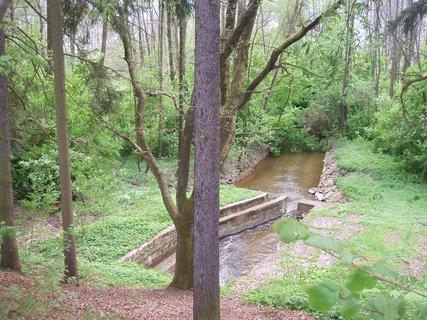 FOTKA - u rybníka  30.4. ..