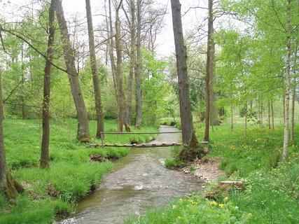 FOTKA - u rybníka  30.4. ....