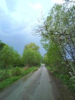 FOTKA - Přírodní rezervace Trotina..