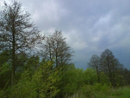 FOTKA - přírodní rezervace na soutoku Labe a Trotinky .