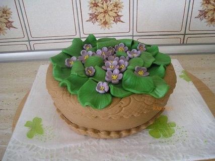 FOTKA - květináč fialek