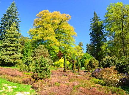 FOTKA - opojné kouzlo zahrad