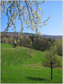 FOTKA - Jarní záběr s rozhlednou na Velké Čantoryji