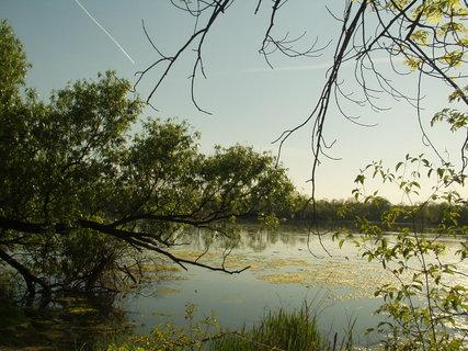 FOTKA - Krajina s rybníčkem