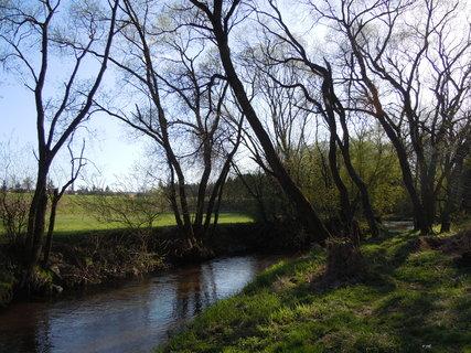 FOTKA - Procházka kolem řeky Lužnice I