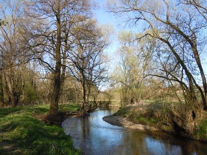 FOTKA - Procházka kolem řeky Lužnice II