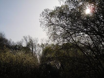 FOTKA - Procházka kolem řeky Lužnice VI